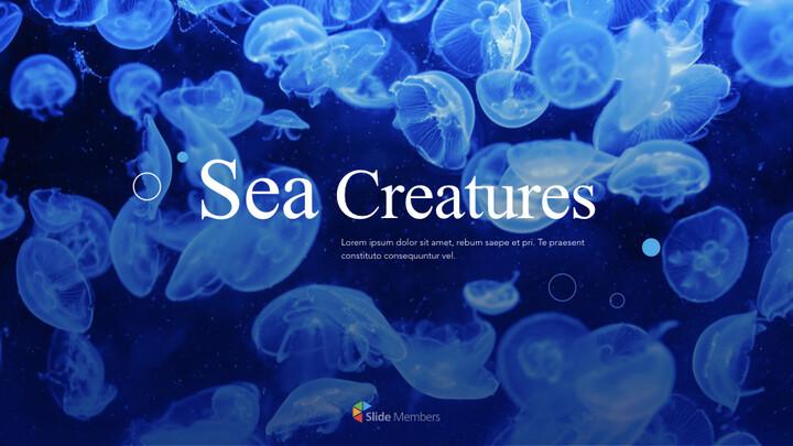 바다 생물 PPT 키노트_01
