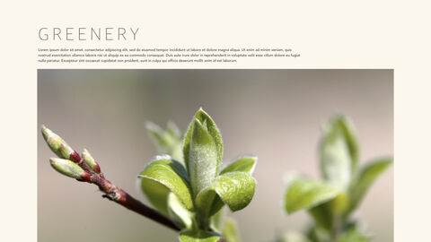 Green & Spring Apple Keynote for Windows_28