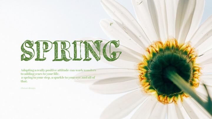 Primavera_01