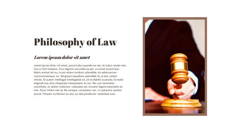What is Law Easy PPT Template_03