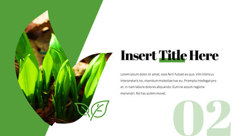 Organic Sprout PowerPoint Presentation Templates_03