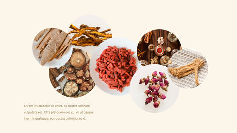Oriental Medicine PowerPoint Presentation PPT_03