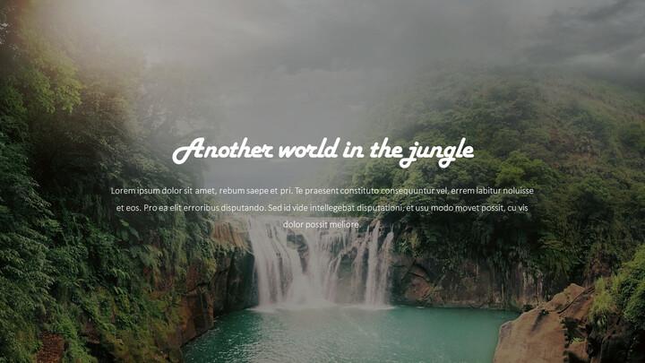 Jungle Action plan PPT_02
