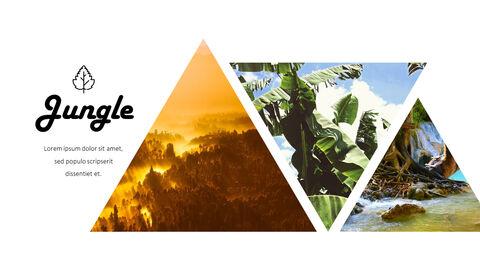 Jungle Action plan PPT_11