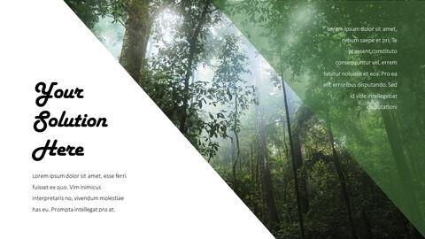 Jungle Action plan PPT_20