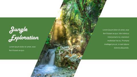 Jungle Action plan PPT_21