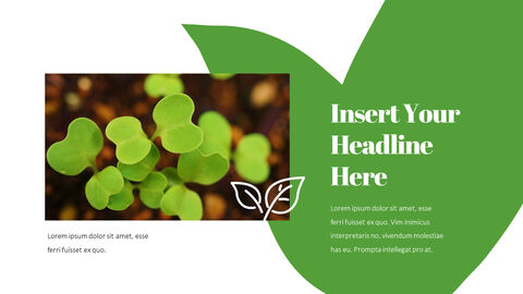 Organic Sprout PowerPoint Presentation Templates_05