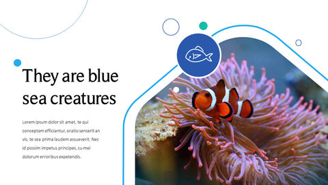 Sea Creatures Templates for PowerPoint_03