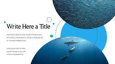 바다 생물 파워포인트용 템플릿_21