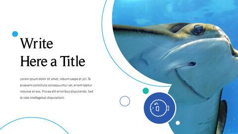 바다 생물 파워포인트용 템플릿_23