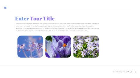 봄 꽃 비즈니스 사업 피피티_04