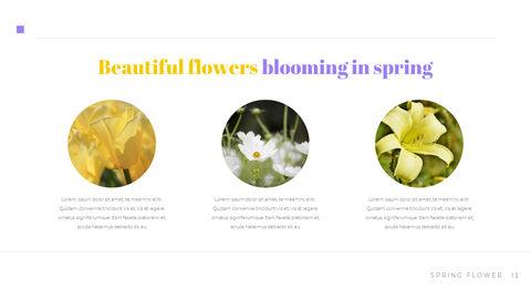 봄 꽃 비즈니스 사업 피피티_13