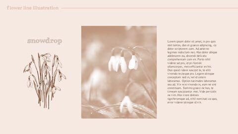 꽃 일러스트 프리미엄 파워포인트 템플릿_12