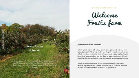 과일 농장 프레젠테이션 디자인_04