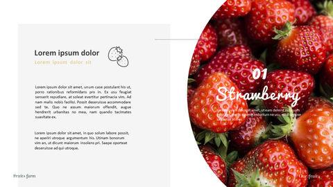 과일 농장 프레젠테이션 디자인_15