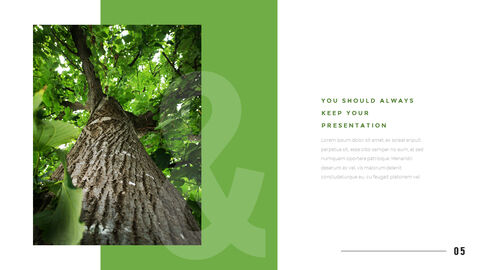 Mountain & Forest PowerPoint Templates for Presentation_03