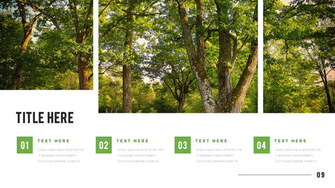 Mountain & Forest PowerPoint Templates for Presentation_09