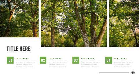 산과 숲 프레젠테이션용 PowerPoint 템플릿_09