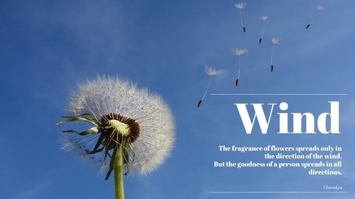 Wind_02