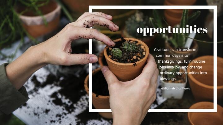 Opportunities_01