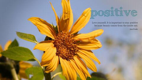 Positive_04