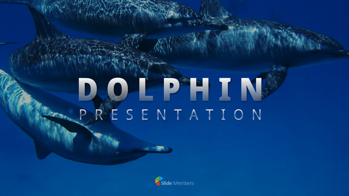Dolphin PowerPoint Templates Multipurpose Design_01
