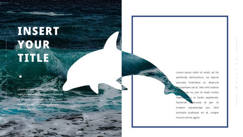 Dolphin PowerPoint Templates Multipurpose Design_03