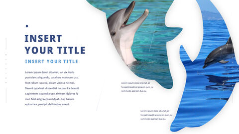Dolphin PowerPoint Templates Multipurpose Design_04