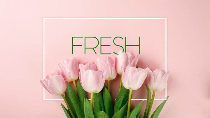 Fresh(Tulip)_01