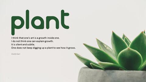 식물_05