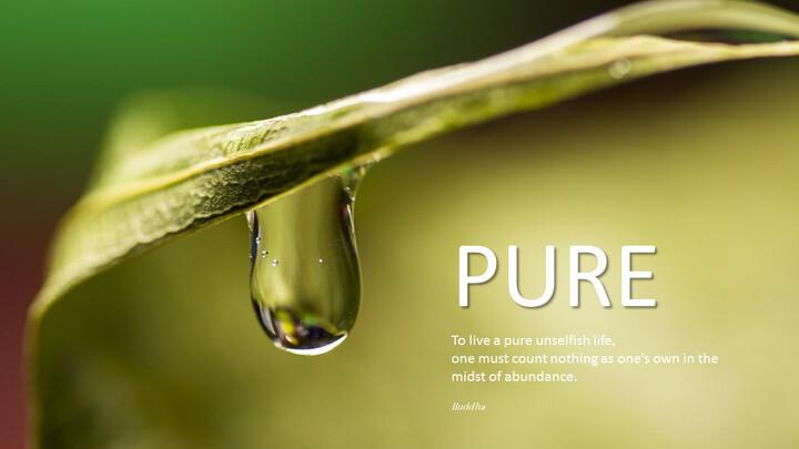 Pure_01