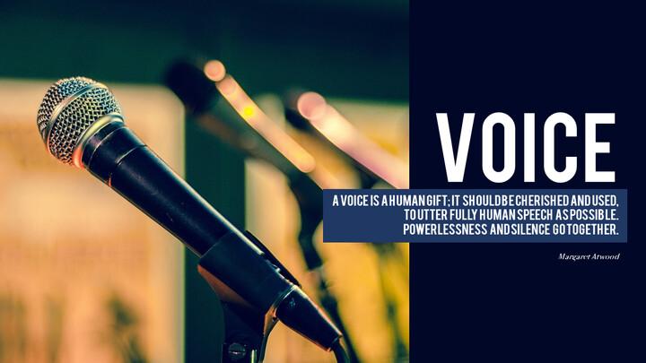 Stimme_01