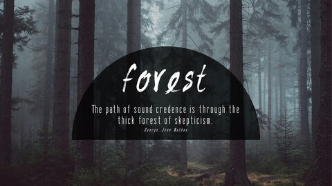Forest_04