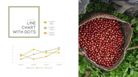커피 산업 슬라이드 프레젠테이션_34