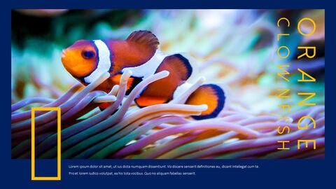 수중 세계 (해수어) 테마 템플릿_09