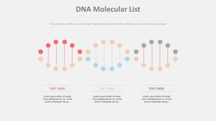 DNA 분자 목록 다이어그램_01