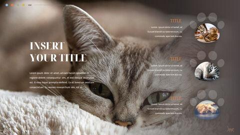 Cat Presentation PowerPoint Templates Design_03