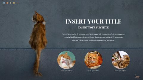 Cat Presentation PowerPoint Templates Design_04