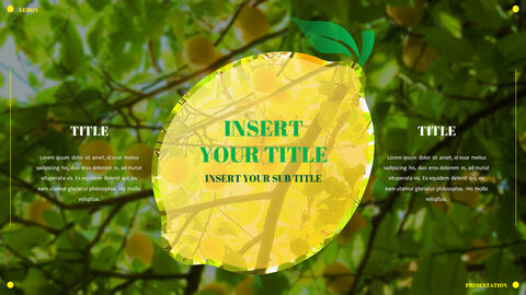 Lemon PowerPoint Templates Multipurpose Design_04