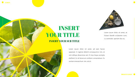 Lemon PowerPoint Templates Multipurpose Design_05