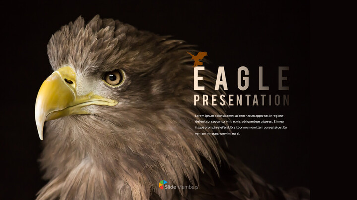 Eagle PowerPoint Presentation Templates_01