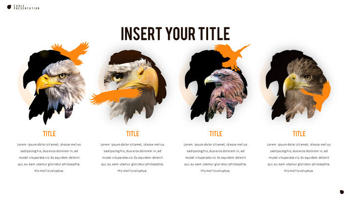 Eagle PowerPoint Presentation Templates_02