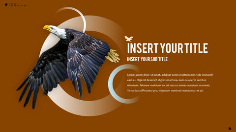 Eagle PowerPoint Presentation Templates_04
