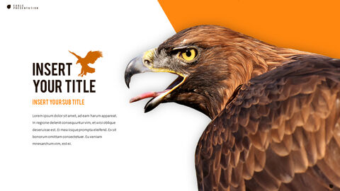 Eagle PowerPoint Presentation Templates_05