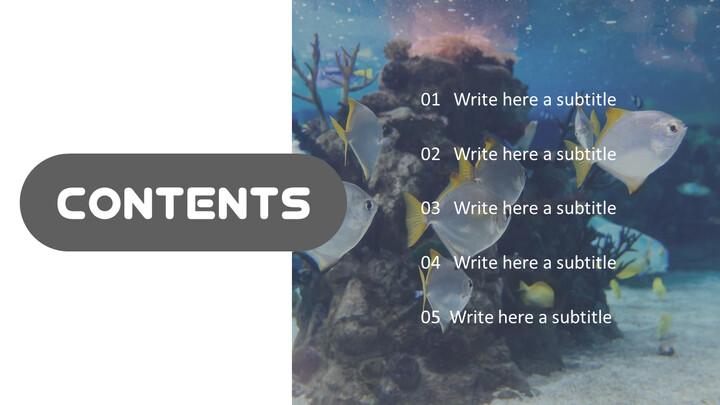 Aquarium Simple PowerPoint Template Design_02