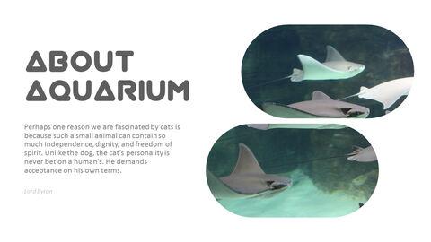 Aquarium Simple PowerPoint Template Design_03