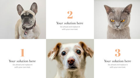 Pet shop Simple PowerPoint Template Design_03