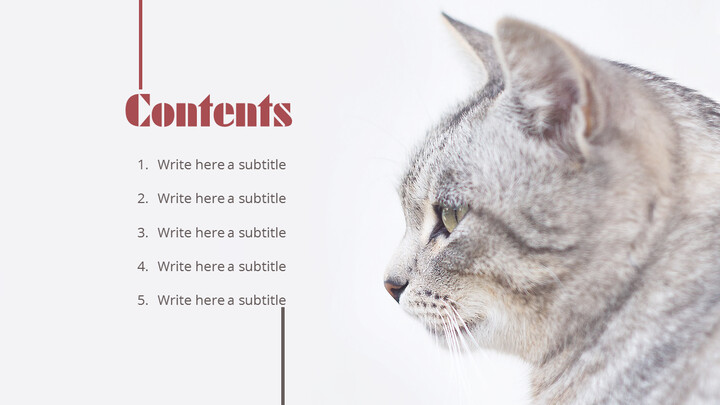 Lovely Pet Simple PowerPoint Templates_02