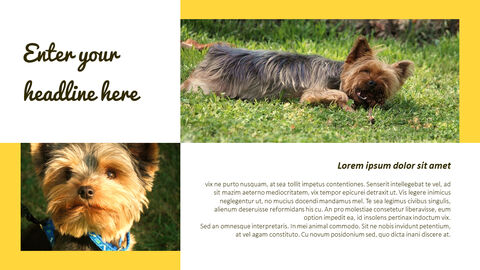 Puppy Behavior Analysis Templates Design_03