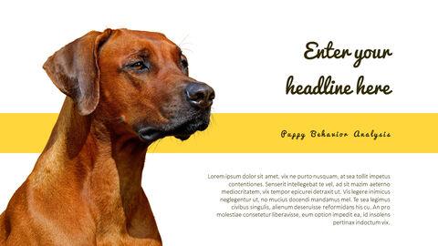 Puppy Behavior Analysis Templates Design_05